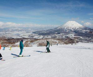 Niseko skiing